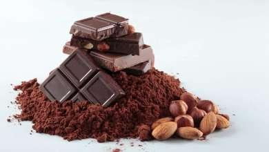 Photo of 13 Fakta Menarik Tentang Koko Dan Coklat