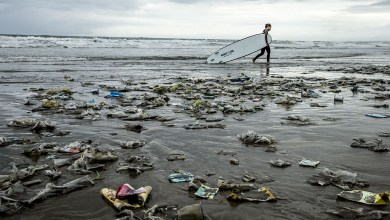 Photo of Pollution: Bali bans single-use plastics