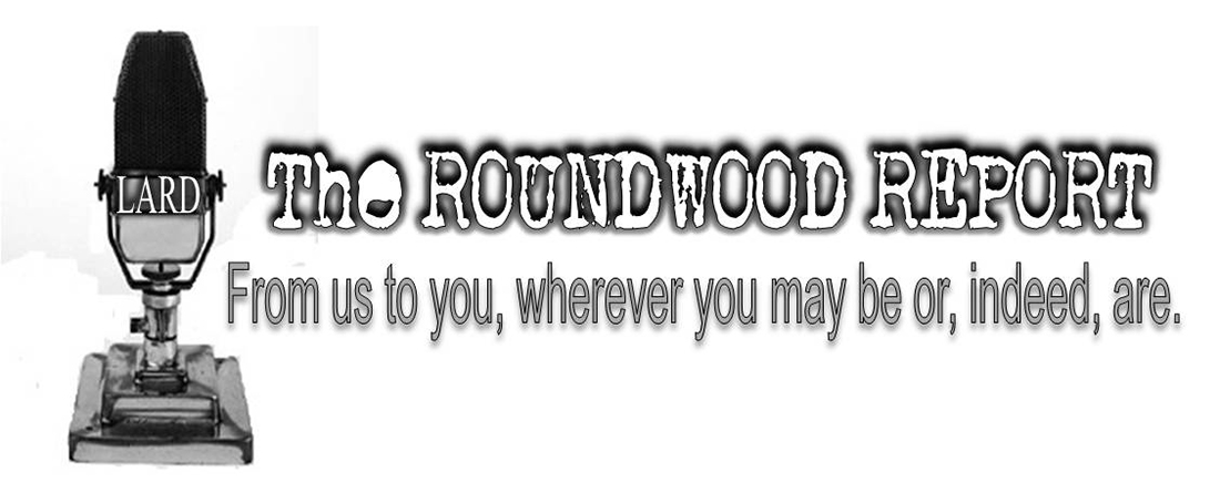roundwood-footer-blog