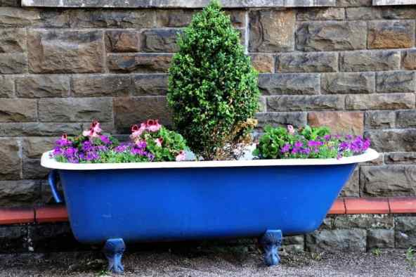 blue clawfoot tub upcyled into a container garden