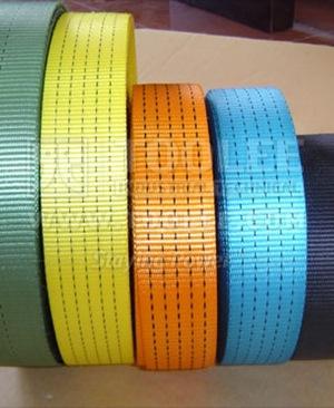 300 3511 Polyester Endless Webbing Sling
