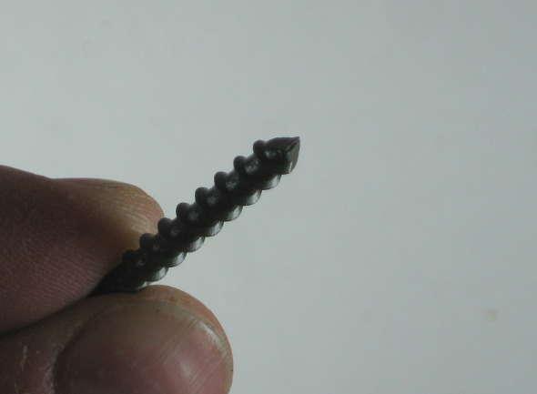 Closeup of the screw tip