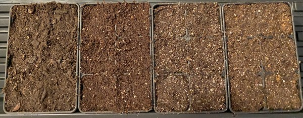 Seedling Mix Experiment 2020