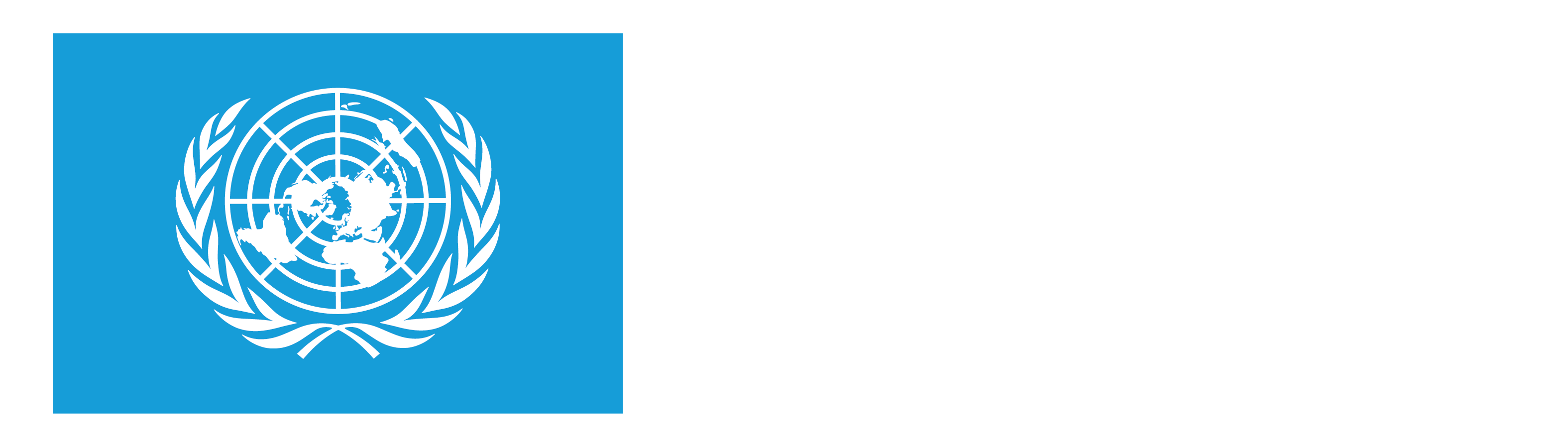 UN75 – Consultation Toolkit