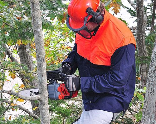 Tanaka TCS33EDTP12 sawing