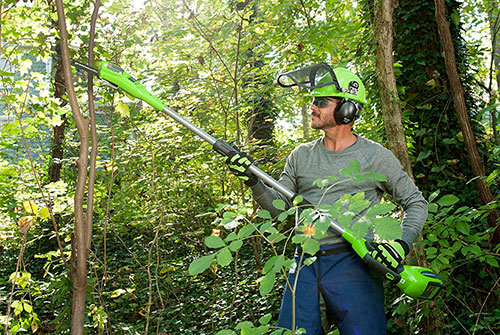 Cutting branches with Greenworks 20672 Gmax