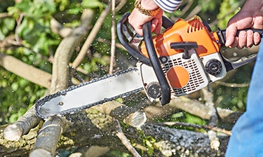 Gas Chainsaws In Action