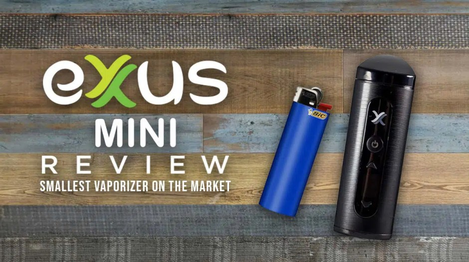 Exxus Mini Review