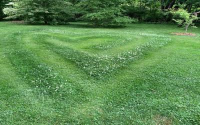 Walking the  Heart Maze