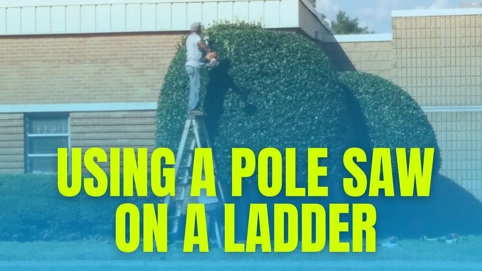 Using A Pole Saw On A Ladder