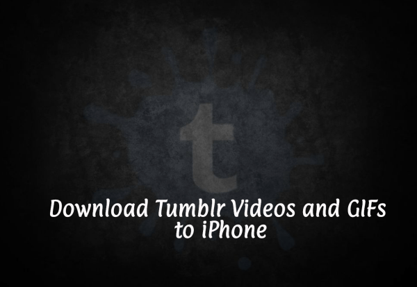 Download Tumblr Videos and GIFs to iPhone
