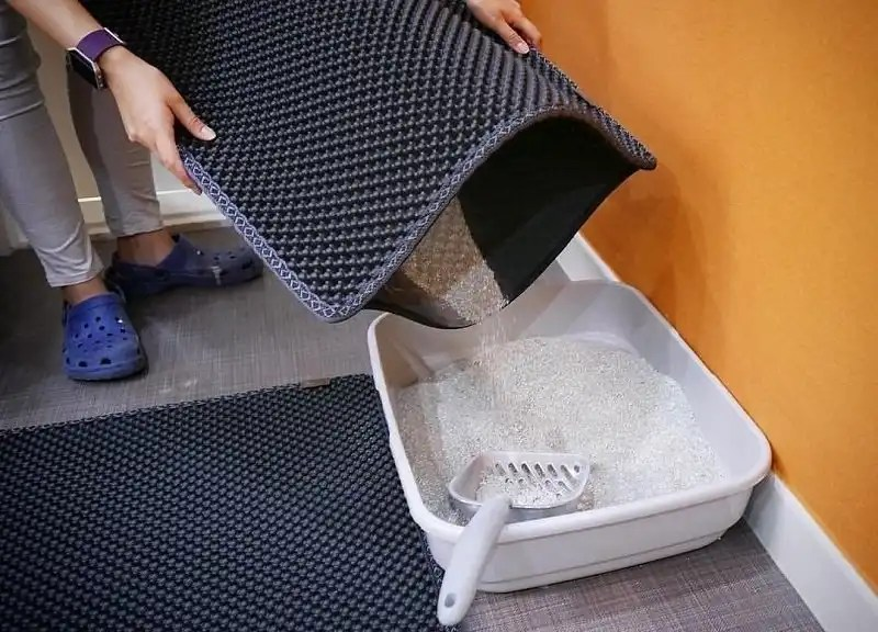 Best Cat Litter Mats For a Clean House and a Happy Kitty