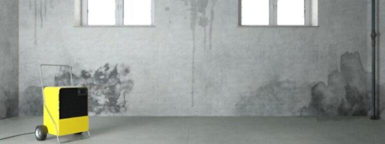painting poured concrete basement walls