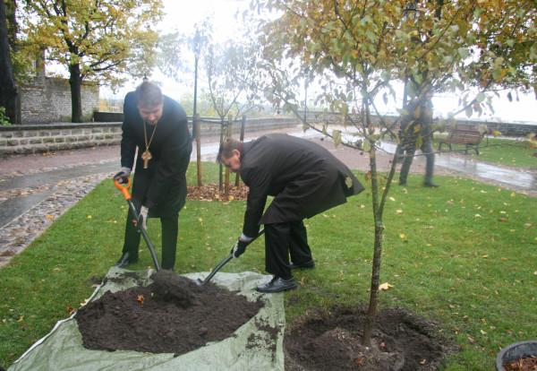 Peapiiskop Urmas Viilma ja Tallinna tegevlinnapea Taavi Aas õunapuud istutamas