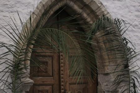 Palmioksad sissepääsul