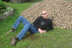 Aarne ja kartulid