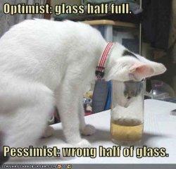 Optimist ja pessimist