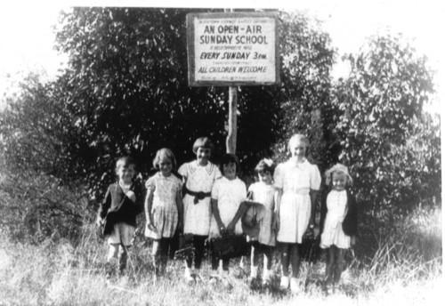 1950 Sunday School Tree