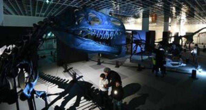 薄暗い会場にランタンがともる中、来場者が懐中電灯を照らして浮かび上がった恐竜の展示=18日夜
