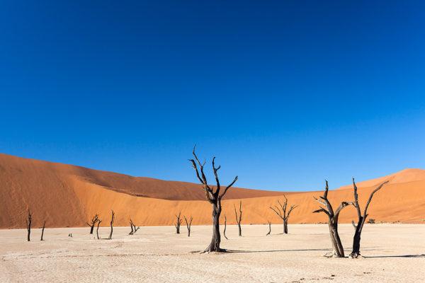 Dead Vlei, Namib Desert, Namibia, April 2013