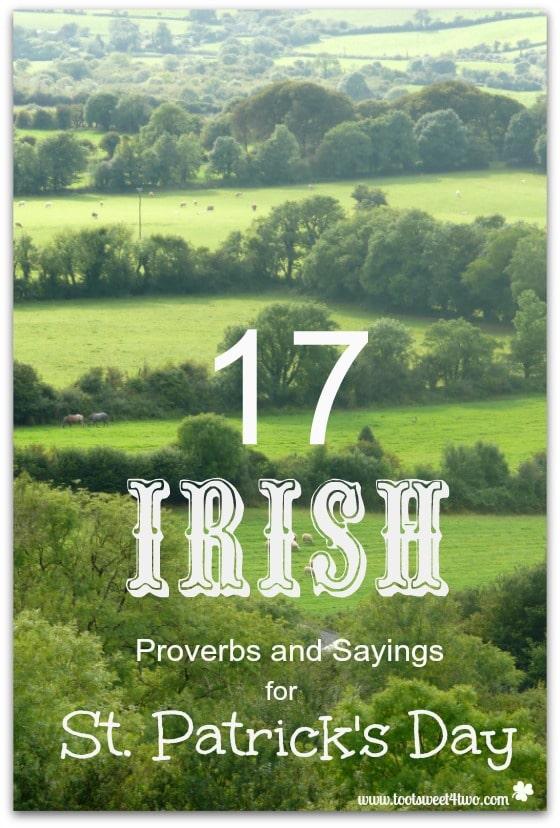17 irish proverbs and