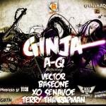 A-Q – Ginja ft Baseone, Terry tha rapman, XO Senavoe, Vector
