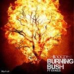Boogey – Burning Bush ft Evaezi