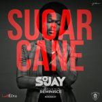 """Sojay – """"Sugarcane"""" ft. Reminisce"""