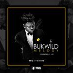 AUDIO + VIDEO: Bukwild – Melody