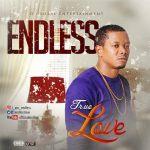 EndLess – True Love