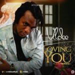 Vildee – Loving You