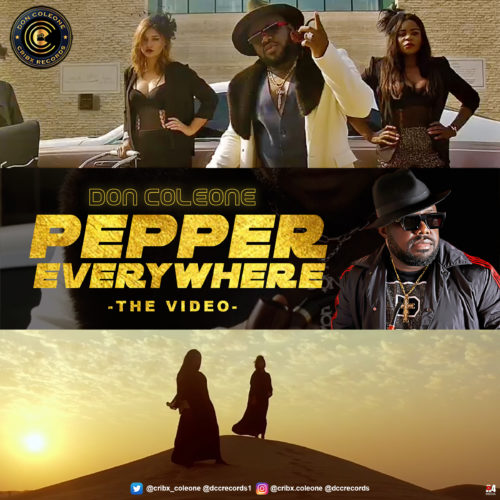 "[Video] Don Coleone - ""Pepper Everywhere"" « tooXclusive"