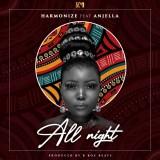"Harmonize – ""All Night"" ft. Anjella"