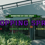 "Davido ft. Chris Brown, Young Thug – ""Shopping Spree LYRICS"""
