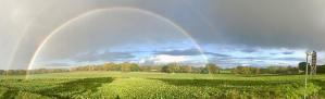 Tom Farm Norfolk Rainbow
