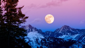 Harvest-Moon-iStock-2.jpg