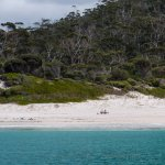 Picnic at Wineglass Bay