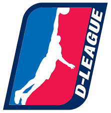 NBA D-League: Opportunity or Bust