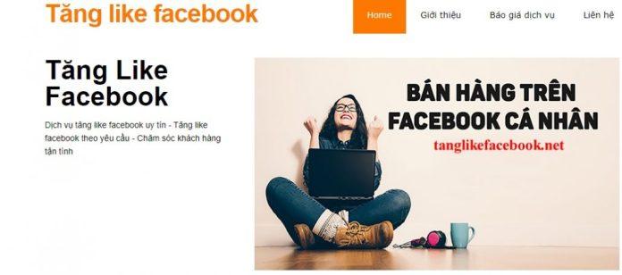 Dịch vụ tăng like Facebook.net