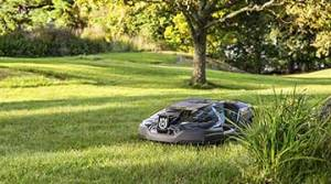 7 Best Robot Lawn Mowers of 2020