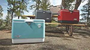 8 Best Stainless Steel Coolers of 2020