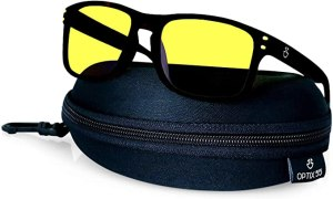 Optix 55 Polarized Glasses for Men