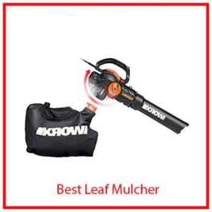 1) WORX Blower/Mulcher/Vacuum