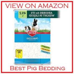 Kaytee Guinea best bedding