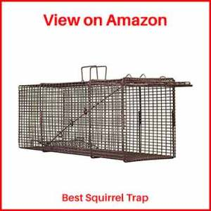 Northern-Industries-Professional-Live-Squirrel-Trap