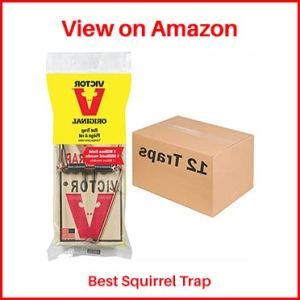 Victor-Metal-Pedal-Squirrel-Trap
