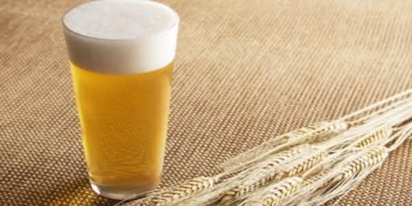 cerveja um das paixoes dos brasileiros