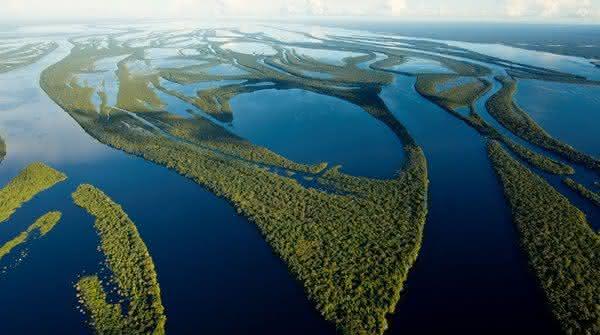 rio amazonas o maior do brasil