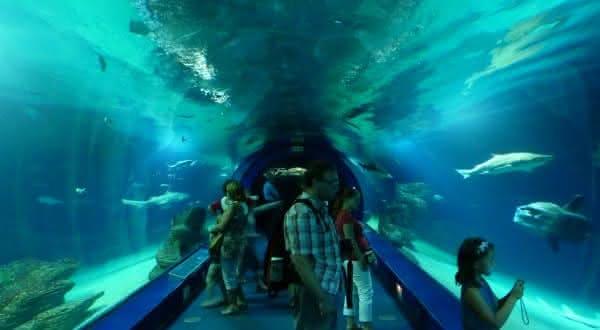 LOceanografic entre os maiores aquarios do mundo