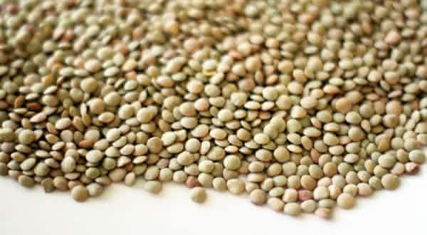 lentilhas proteina